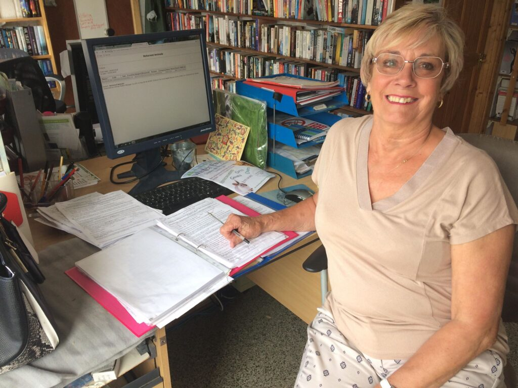 The Cat and Rabbit Rescue Centre - Admin Volunteer