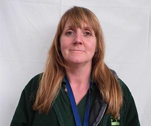 The Cat and Rabbit Rescue Centre - Sue Elkington
